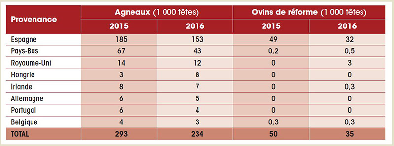 Importations 2016 viandes ovines