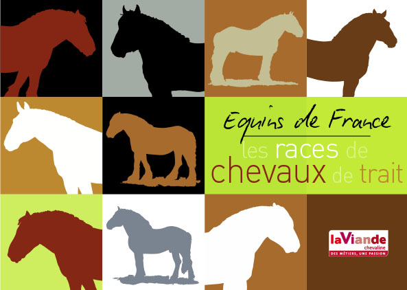 Equins de France, les races de chevaux de trait