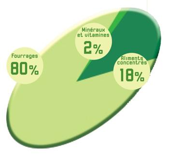Composition moyenne de la ration alimentaire d'un bovin adulte