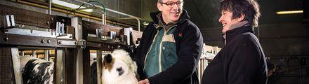 Mise en marché des animaux - Métiers