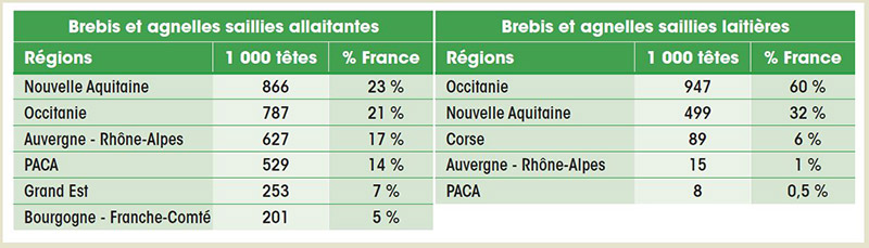 France : bilan abattages, production, consommation en 2016, ovins seuls