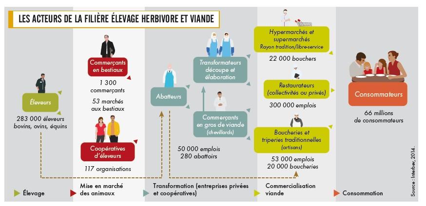 http://www.la-viande.fr/sites/default/files/images/environnement-ethique/atlas/chapitres/filieres-sources-economie-emploi/atlas-c03-p01-ateurs-filiere-elevage-herbivore-viande.jpg