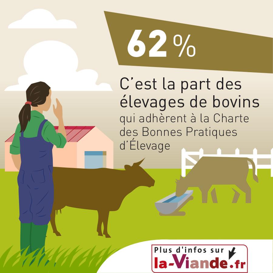 62 % C'est la part des élevages de bovins qui adhèrent à la Charte des Bonnes Pratiques d'Elevage