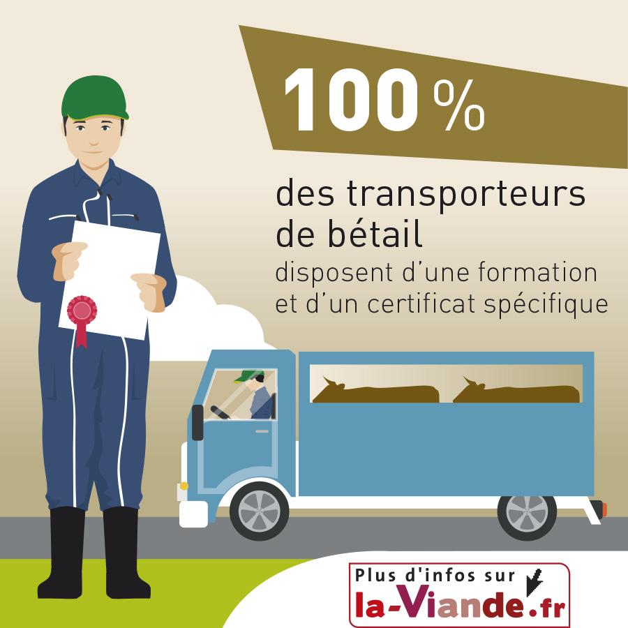 100% des transporteurs de bétail disposent d'une formation et d'un certificat spécifiques