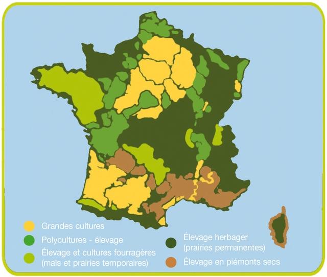 Systèmes d'élevage d'herbivore en France