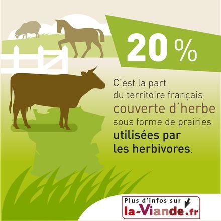 L'élevage herbivore et l'aménagement du territoire