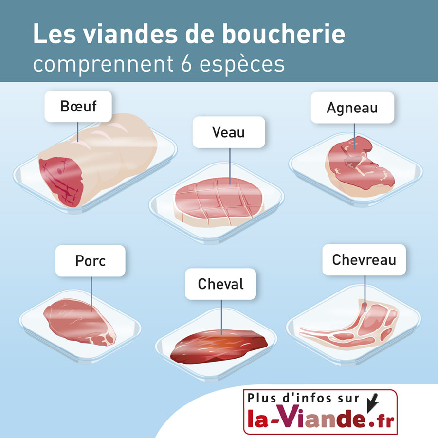 Les viandes de boucherie comprennent 6 espèces