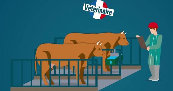 www.la-viande.fr